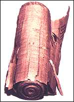 Papyrus roll from about 1000 B.C.